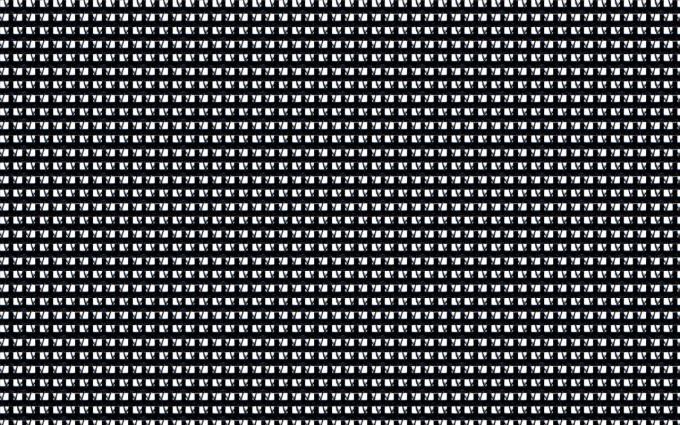 Noir - 810