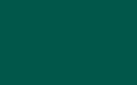 Vert - 995